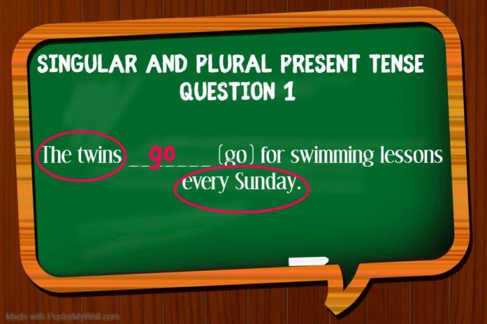 Primary 1 English Grammar Syllabus - singular and plural present tense question 1