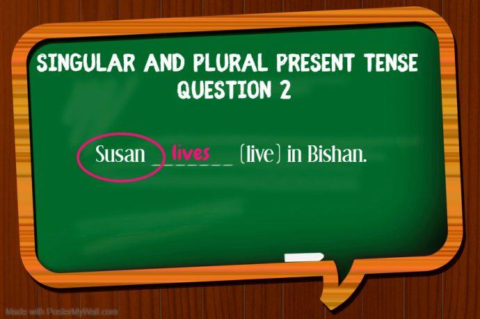 Primary 1 English Grammar Syllabus - singular and plural present tense question 2